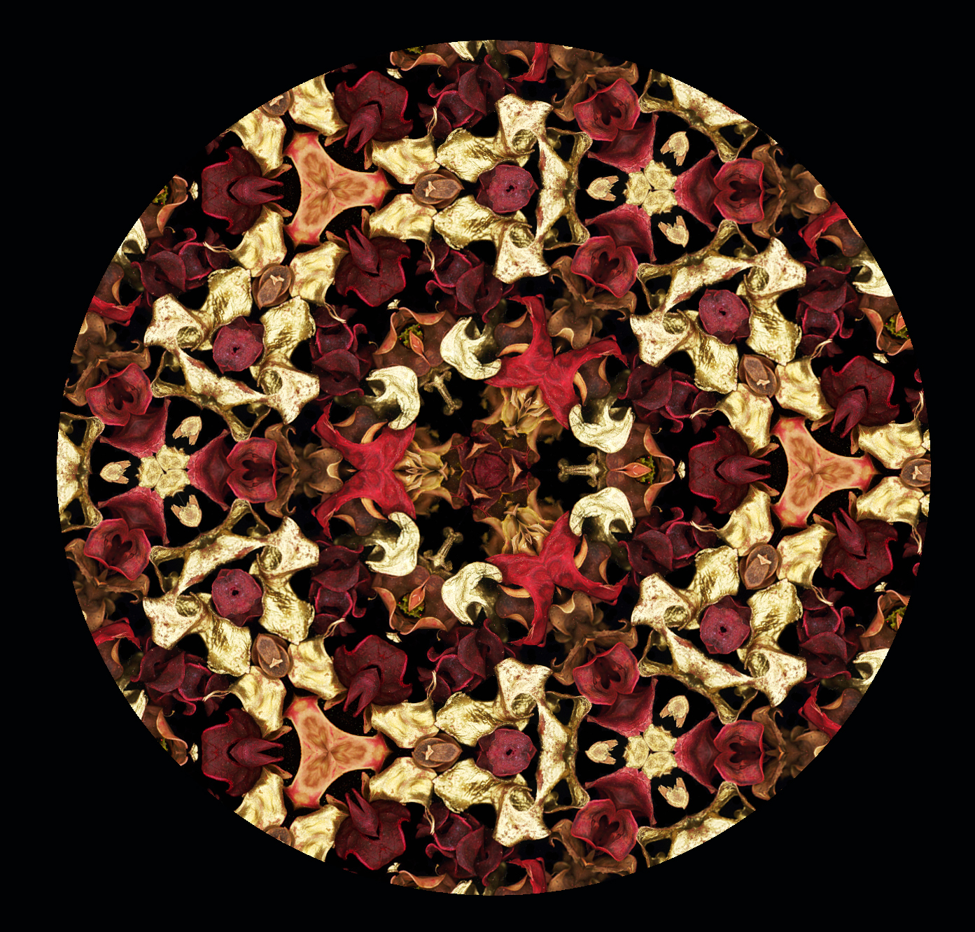 Kaleidoscope of petals