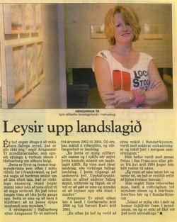 Morgunblaðið 2004