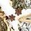Thumbnail: Chrystal Snowflake