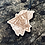 Thumbnail: Triangel Roses