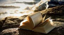 Para que serve um leitor? Sobre a Leitura