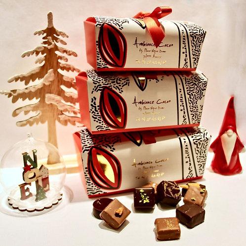 Ballotin chocolats fins 250g