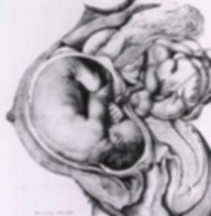 birth6.jpg