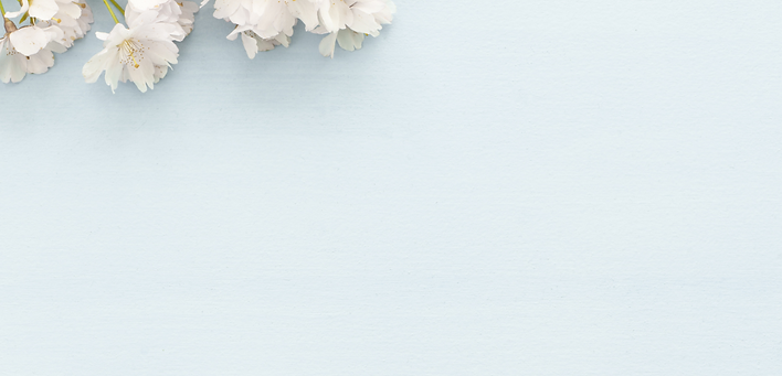 flower background .png