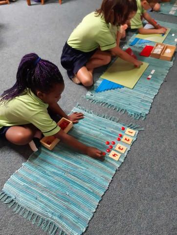 Primary School Maths