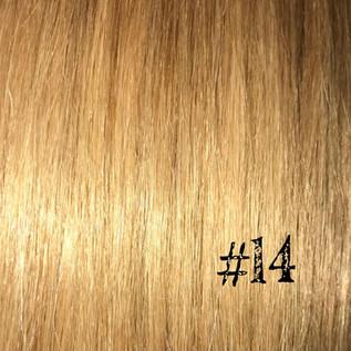 Honey Blonde #14