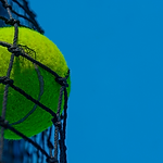 Tennis 2.png