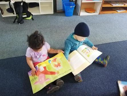 Toddler Reading Books