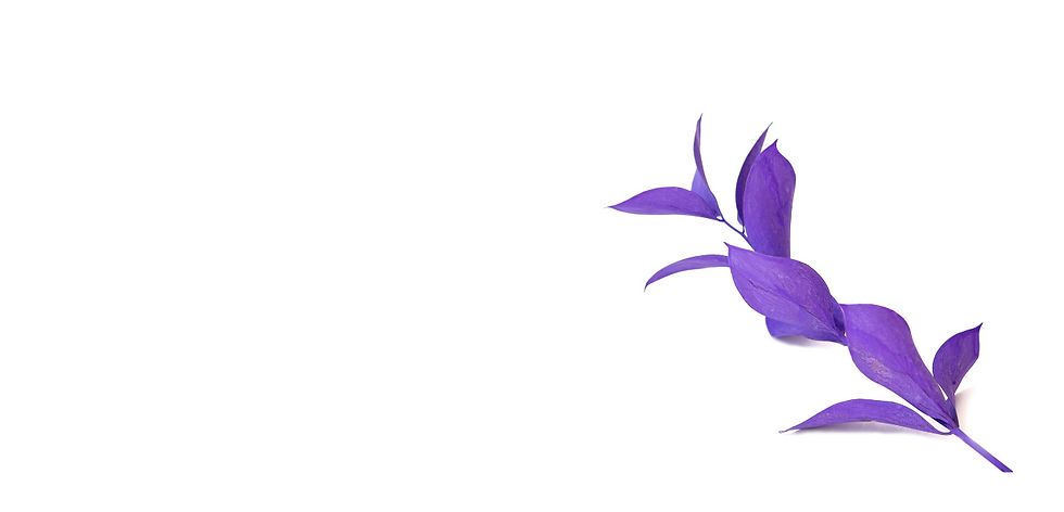 purple flower background .png