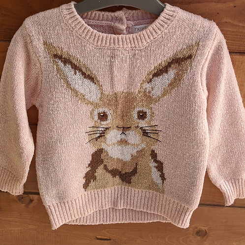 Next Rabbit Jumper