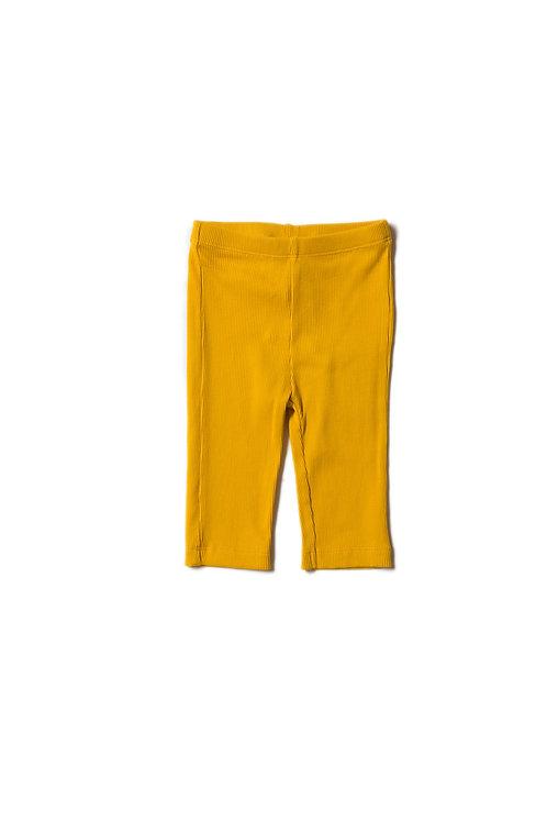 Little Green Radicals Gold Rib Leggings