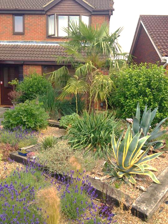 One of the first gardens I did, 8 years ago_edited