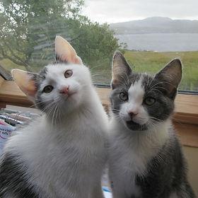 11 Sep Jasper and Beryl.jpg