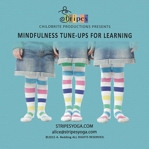 MINDFULNESS Tune-Ups for Learning DVD