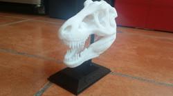Cabeza de T Rex