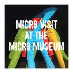 Micro Visit