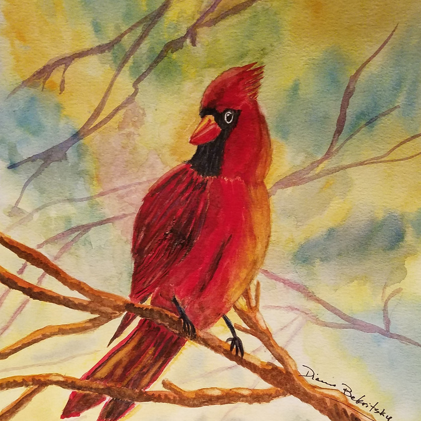 Cardinal watercolor DB