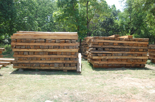 Timber Harvesting & Sale