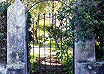 Le jardin de l'oubli de Clarisse Sabard