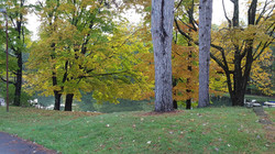 Camp-Front-Pond-Fall