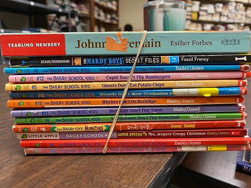 Young Readers  - Bailey School Kids, Hardy Boys, Johnny Tremain