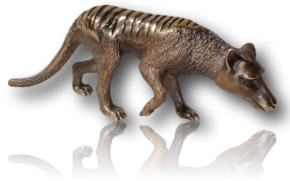 Small Walking Tasmanian Tiger