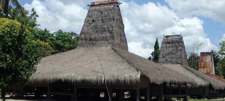 Sumba Houses