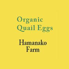HAMANAKO FARM日本公司,以最天然有機的方法,製造出可口美味的鵪鶉蛋...