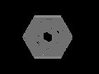 logo-genuine-21.png