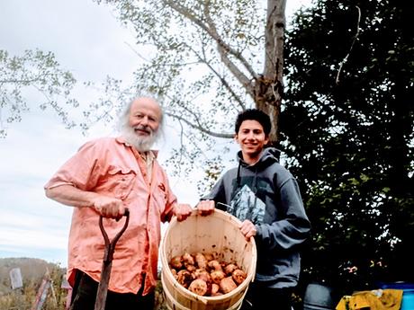 potatoes 2017.png