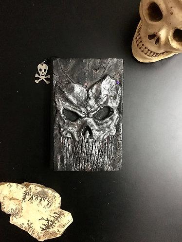 Skull sketch book