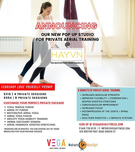 HAYVN ANNOUNCEMENT-2.png