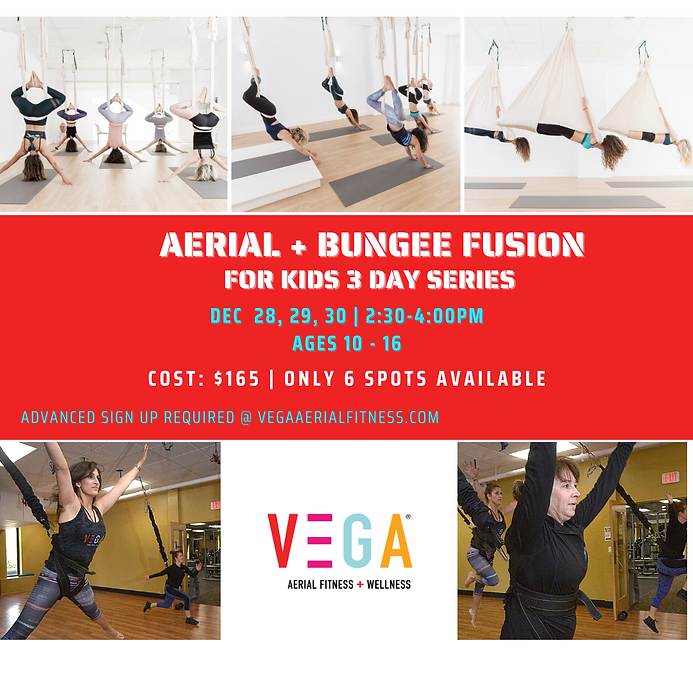 AERIAL + BUNGEE FUSION KIDS SESSIONS (2)