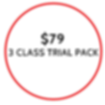 $36 1 SINGLE CLASS-6.png