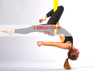1 SINGLE CLASS WEBSITE (2).png