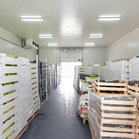 Comment bien conserver les fruits et légumes en chambre froide ?