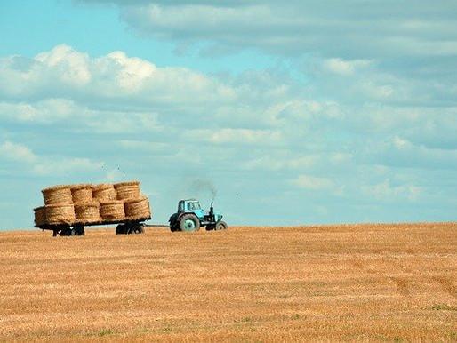 """L'agricoltura in mano ai giovani: in Italia 2287 aziende agricole """"young"""""""