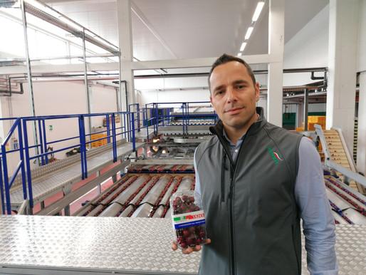 """Agrintesa: Vignola e Castelfranco Emilia sono le capitali della ciliegia """"innovativa"""""""