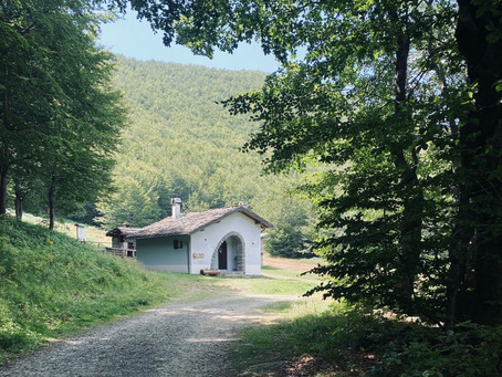 Domenica 6 settembre: S.Geminiano - Passo Radici Foce del Giovarello - Maccheria