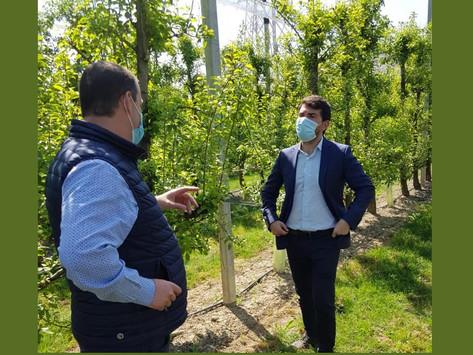 Lotta alla contraffazione: il Parmigiano Reggiano vince contro multinazionale scorretta