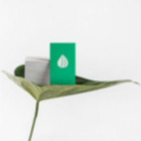 cubo2-naturaleza-pura.jpg