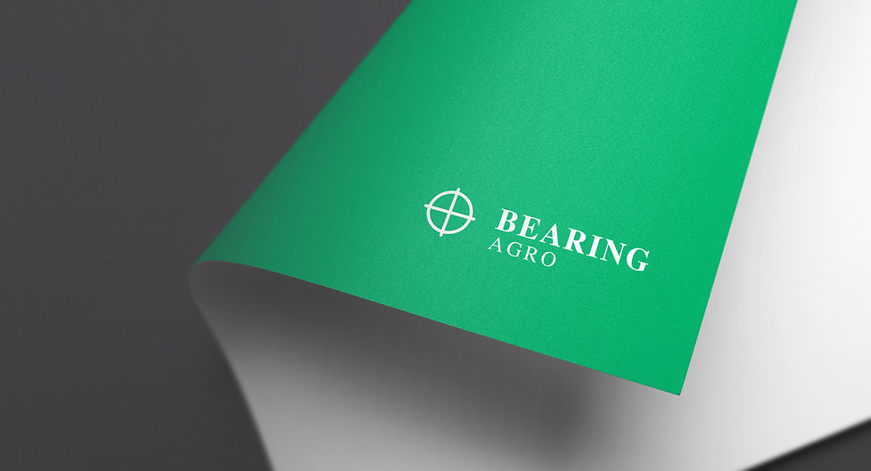 Bearing-slider2.jpg