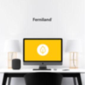 ferniland-cubo1.jpg