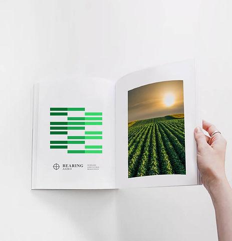 Bearing-cubo-libro.jpg