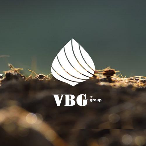 Vbg Group