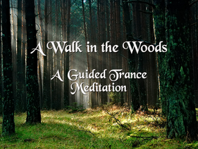 A Walk in the Woods | A Guided Trance Meditation