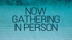 now gathering.jpg