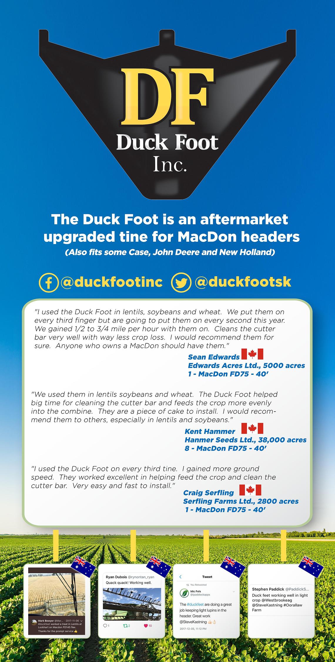 Duckfeet Banner.jpg