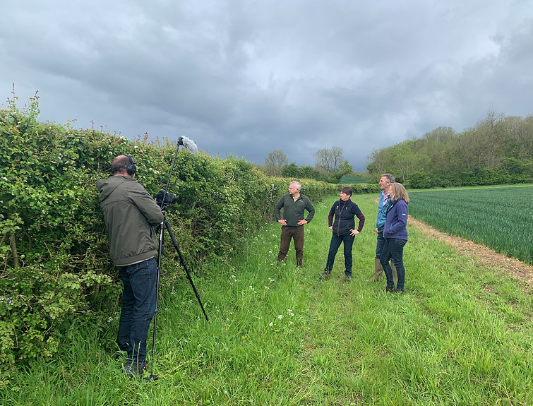 Filming the Hedgerow Films, Littlebury Green, May 2021_edited.jpg