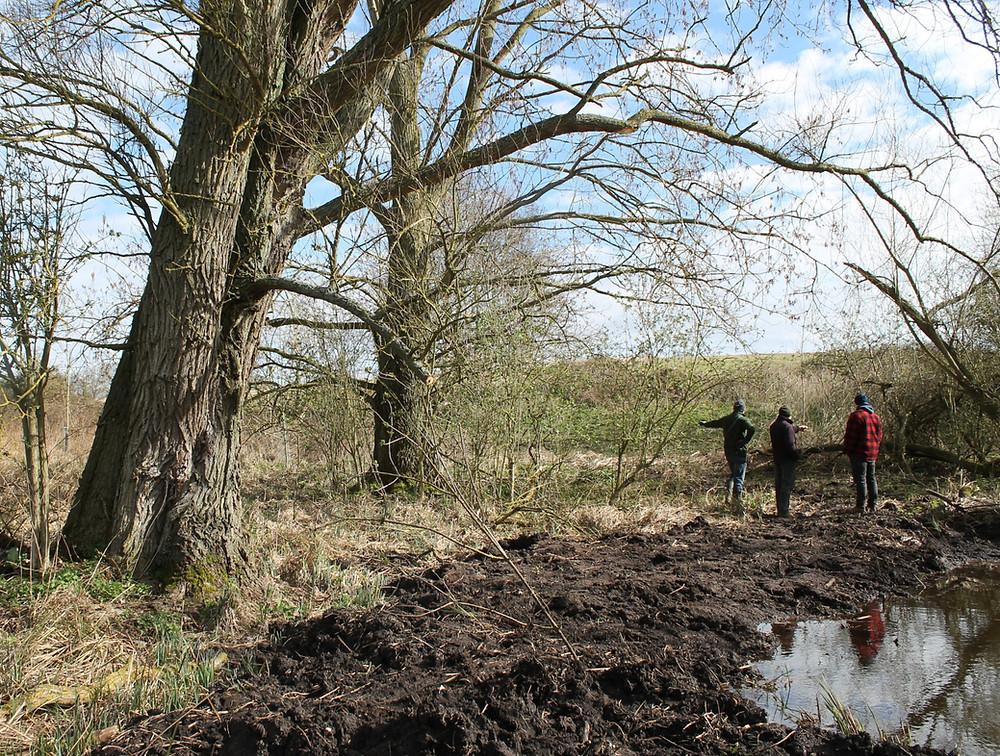 A pond creation site in Essex